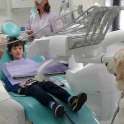 Senza paura, c'è Luna! La pet therapy dal dentista!