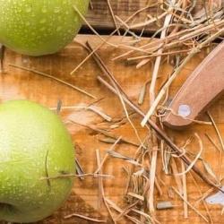 """È vero che """"una mela al giorno leva il medico di torno""""?"""